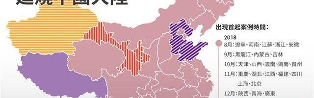 西藏林芝地区爆发非洲猪瘟